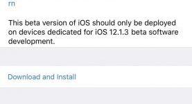 Actualización beta de desarrollador de Apple iOS 12.1.3