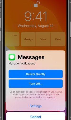 Cómo desactivar las notificaciones en la serie iPhone 11