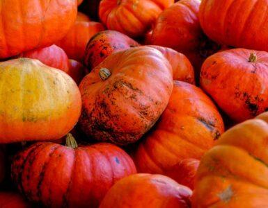 Ideas de decoración de Acción de Gracias